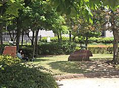 Dscn8461