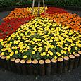 王子駅前の花壇