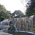 新宿中央公園 1