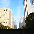 新宿中央公園 2
